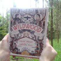 https://ahistoryofcrows.wordpress.com/2015/01/03/wildwood-colin-meloy/
